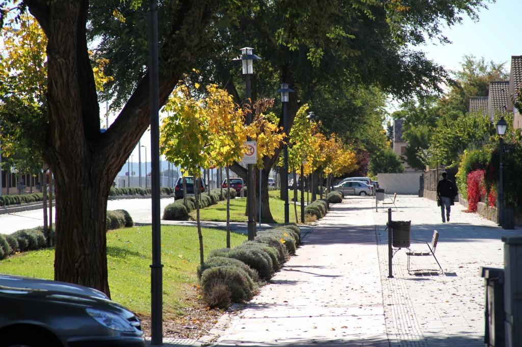 Avenida Senda de Enmedio. Superficie: 8.480 m2. Azuqueca de Henares. Guadalajara. 2007