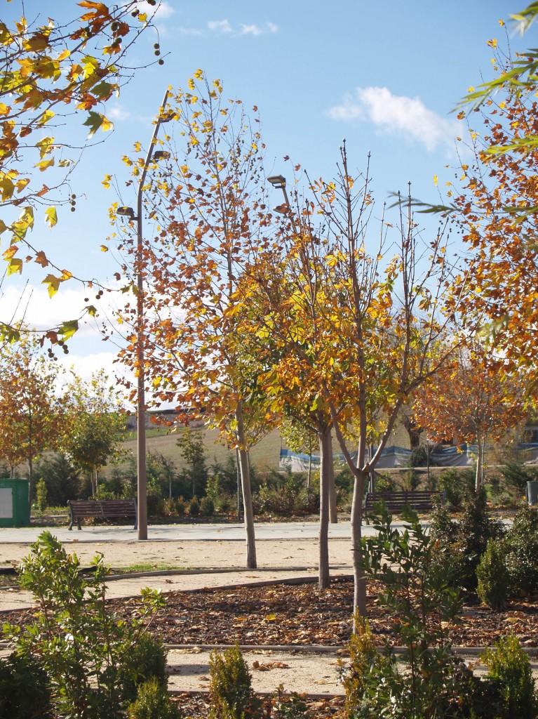 Parque municipal de ferias y congresos. Superficie: 52.005 m2. Carretera Cabanillas Marchamalo. Marchamalo. Guadalajara. 2006